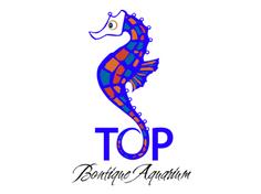 http://www.owg.com.my/wp-content/uploads/Top-Boutique-aquarium-236x176.png